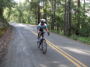 Descending the shaded Bolinas-Fairfax Road after climbing Mt. Tam