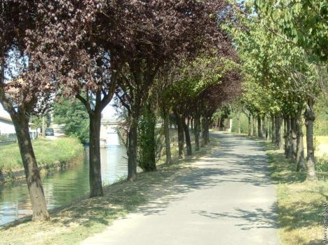 Bike Path from Milan to Pavia